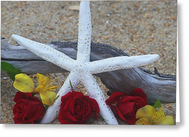 Shells Greeting Cards - White Finger Starfish and Flowers 2 Greeting Card by Cathy Lindsey