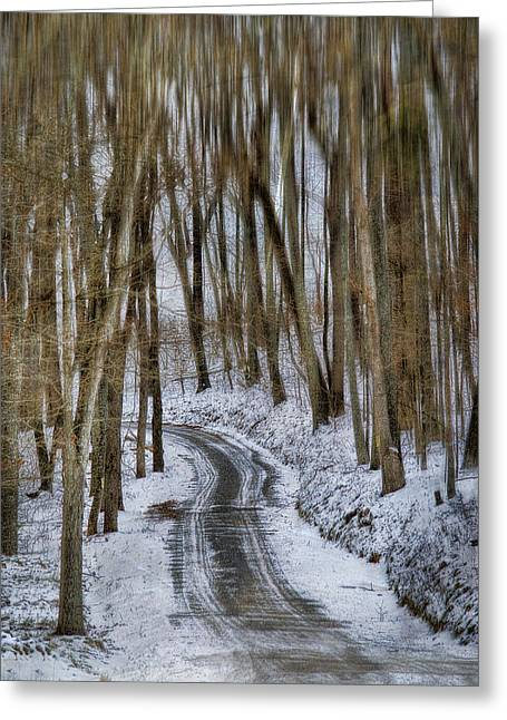 Snow Tree Prints Greeting Cards - White Forest Greeting Card by Kathy Jennings