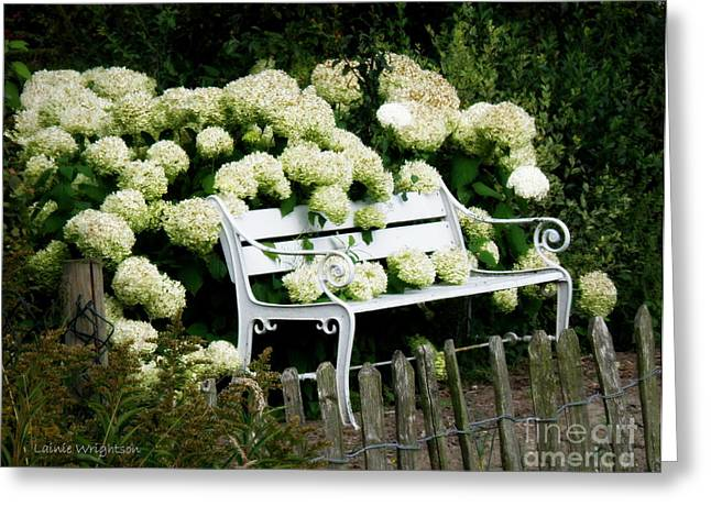 Lainie Wrightson Greeting Cards - White Garden Bench Greeting Card by Lainie Wrightson