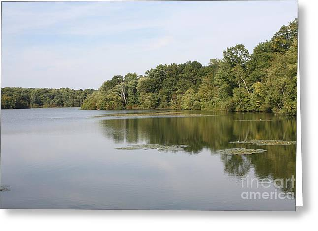 White Heron Lake Poconos Pa II Greeting Card by John Telfer