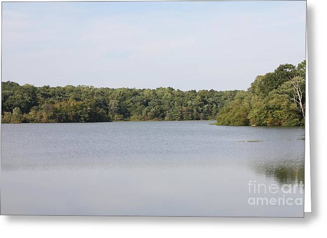 White Heron Lake Poconos PA III Greeting Card by JOHN TELFER