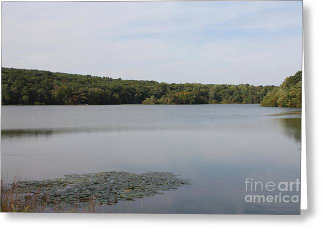 White Heron Lake Poconos PA Greeting Card by JOHN TELFER