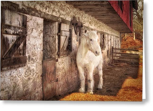 Restored Plantation Greeting Cards - White horse by an old barn Greeting Card by Carolyn Derstine