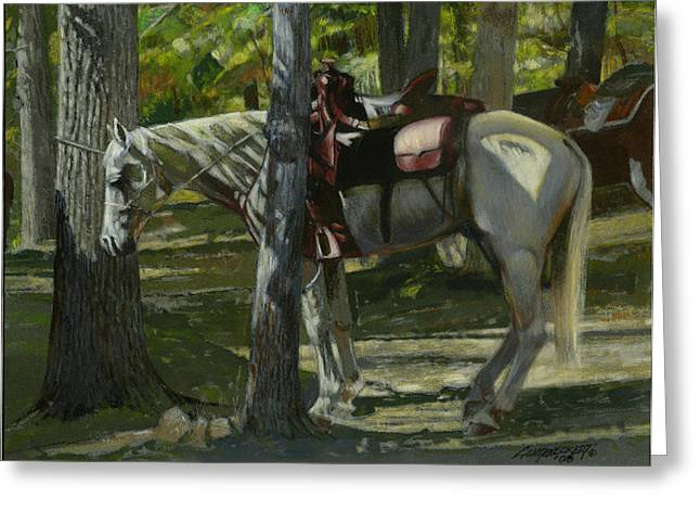 Trail Ride Greeting Cards - White Horse Tied Greeting Card by Don  Langeneckert