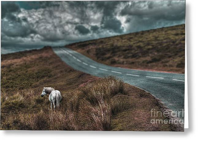 Summer Storm Greeting Cards - White Horse Exmoor Greeting Card by Curtis Radclyffe
