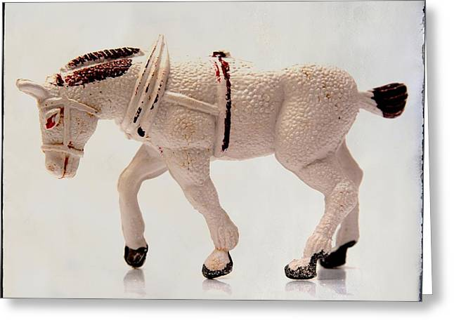 Toy Animals Greeting Cards - White horse figurine Greeting Card by Bernard Jaubert