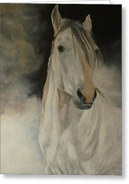 White Horse Greeting Card by Julie Bond