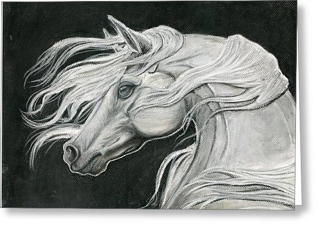Wild Horse Pastels Greeting Cards - White Horse Greeting Card by Stephanie Knight