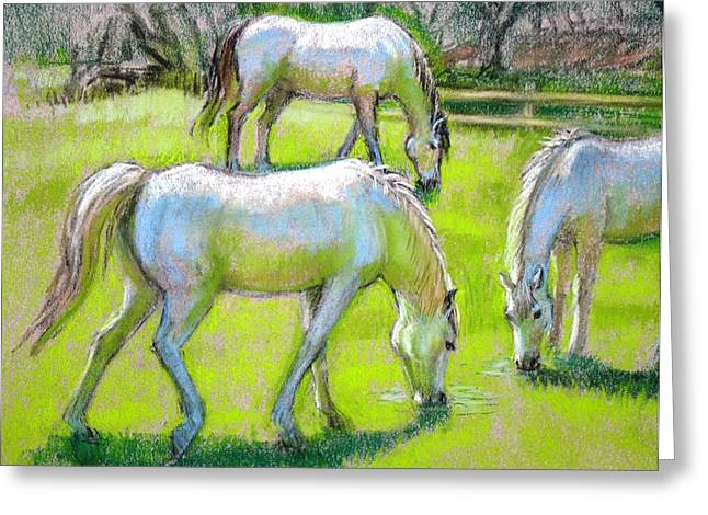 White Horse Pastels Greeting Cards - White Horses Grazing Greeting Card by Sue Halstenberg