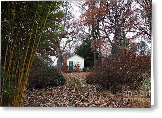 Old School House Greeting Cards - White House in the Garden Greeting Card by John Rizzuto