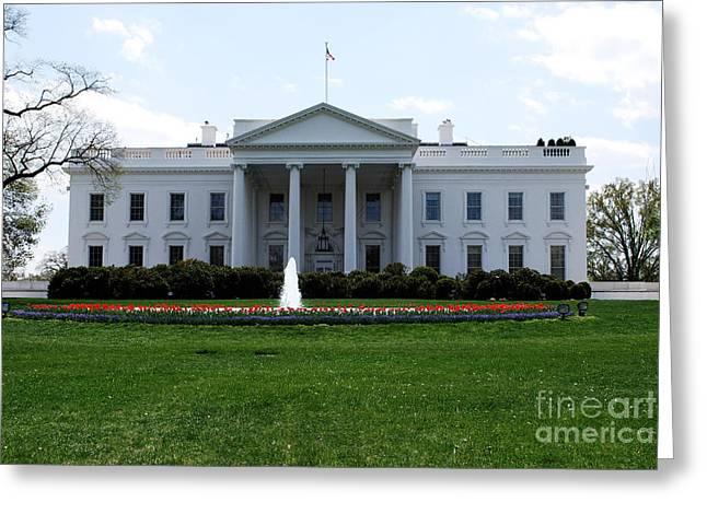 President-elect Greeting Cards - White House in Washington DC Greeting Card by DejaVu Designs