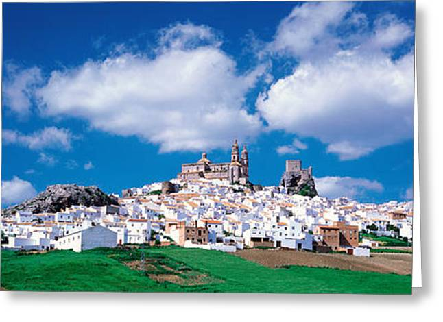 Pueblo Blanco Greeting Cards - White Houses Andalusia Olvera Spain Greeting Card by Panoramic Images