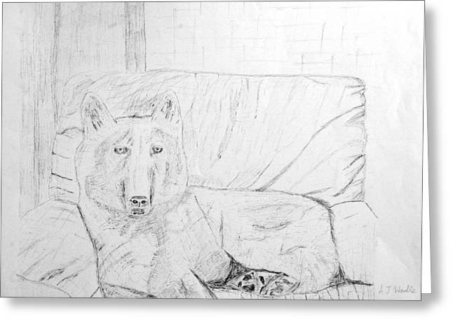 Husky Drawings Greeting Cards - White Husky sitting on couch Greeting Card by Adam Wardle