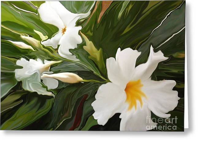 Jasmine Greeting Cards - White Jasmine Greeting Card by Corey Ford