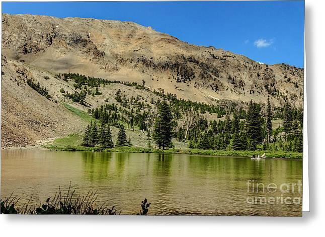 White Knob Mountains Greeting Cards - White Knob Mountain Lake Greeting Card by Robert Bales