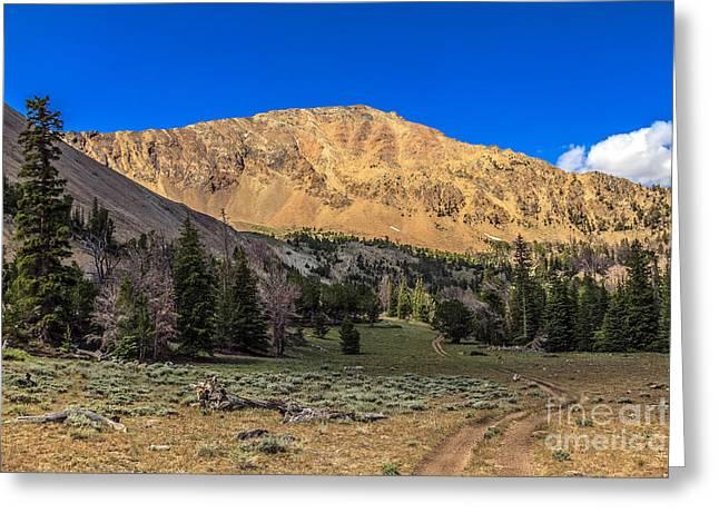 White Knob Mountains Greeting Cards - White Knob Mountain Peak Greeting Card by Robert Bales