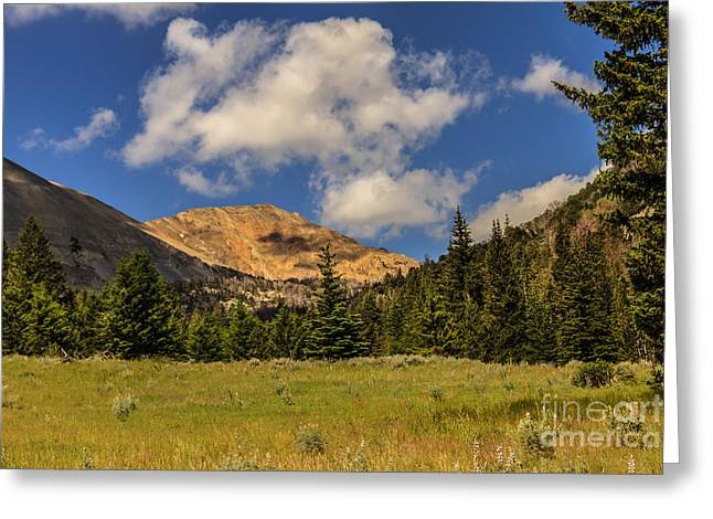 White Salmon River Greeting Cards - White Knob Moutains Greeting Card by Robert Bales