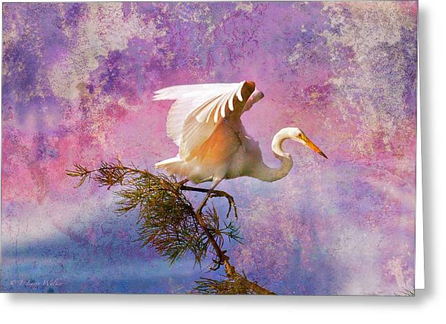 White Lake Swamp Egret Greeting Card by J Larry Walker