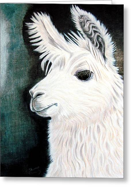 Llama Drawings Greeting Cards - White Llama Greeting Card by Shannon Clements