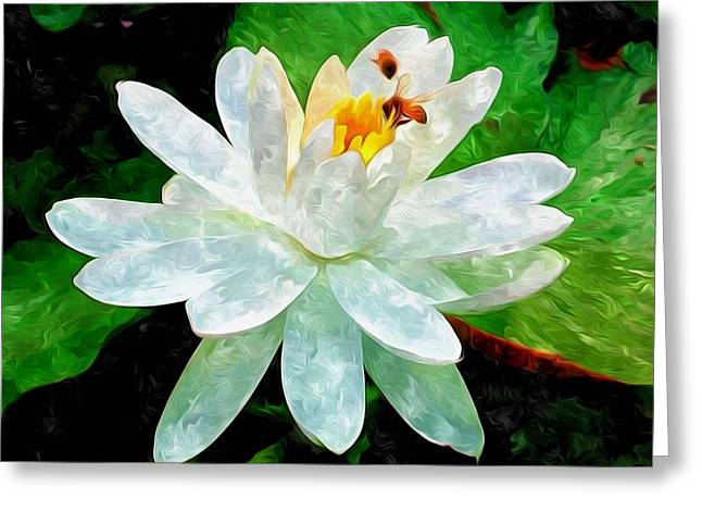 Water Lilies And Insects Greeting Cards - White Lotus And Bee Working Greeting Card by Lanjee Chee