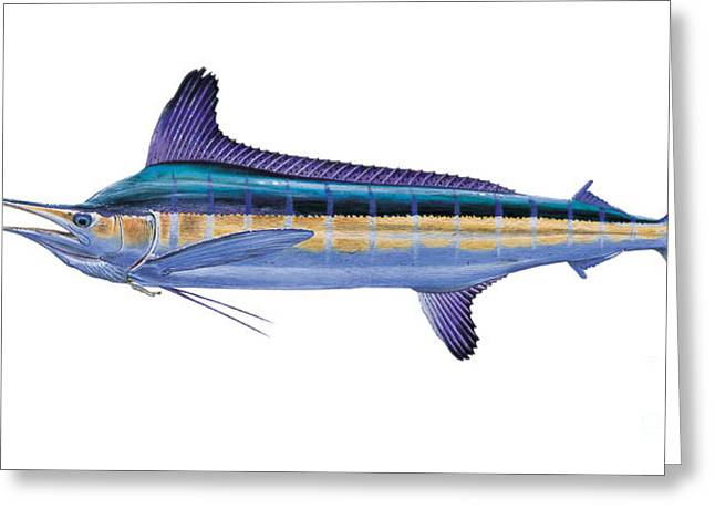 Pirates Paintings Greeting Cards - White Marlin Greeting Card by Carey Chen
