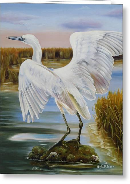 White Morph Reddish Egret At Creole Gap Greeting Card by Phyllis Beiser