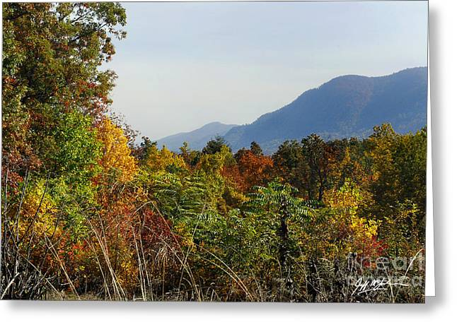Jeff Mcjunkin Greeting Cards - White Oak Mountain Fall Greeting Card by Jeff McJunkin