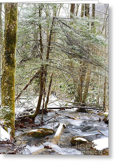 Clean Water Greeting Cards - White Oak Run in Winter Greeting Card by Thomas R Fletcher