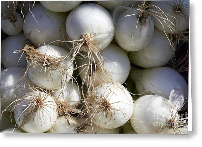 Farm Stand Greeting Cards - White Onions Greeting Card by Tony Cordoza