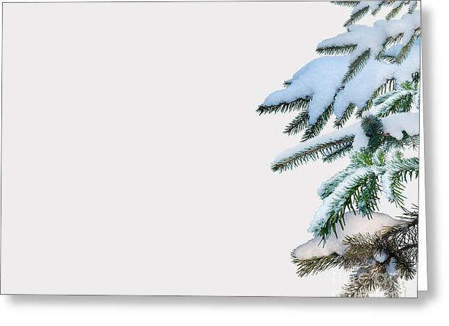 Ski Art Photographs Greeting Cards - White Out Greeting Card by Cheryl Young