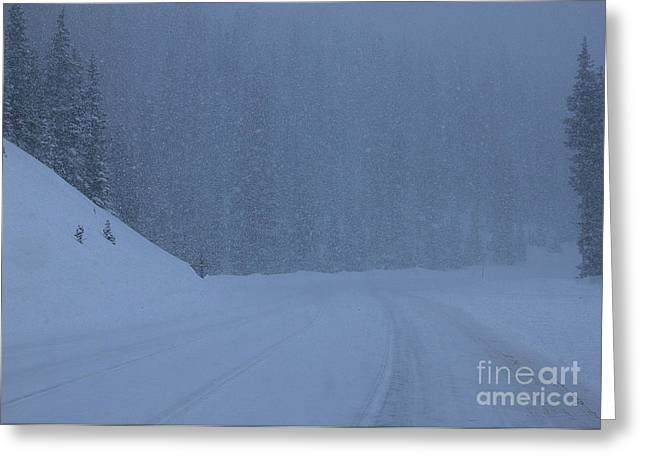 Harsh Conditions Greeting Cards - White Out on Monarch Mountain Greeting Card by Janice Rae Pariza