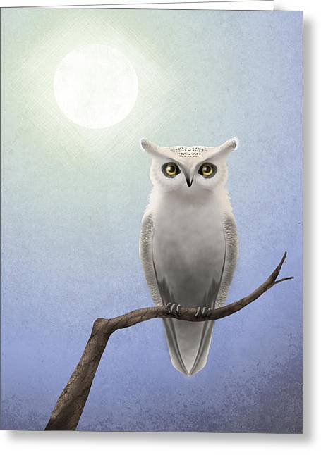 White Owl Greeting Card by April Moen
