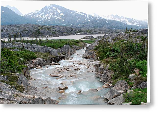 Klondike Gold Rush Greeting Cards - White Pass Greeting Card by Terence Davis