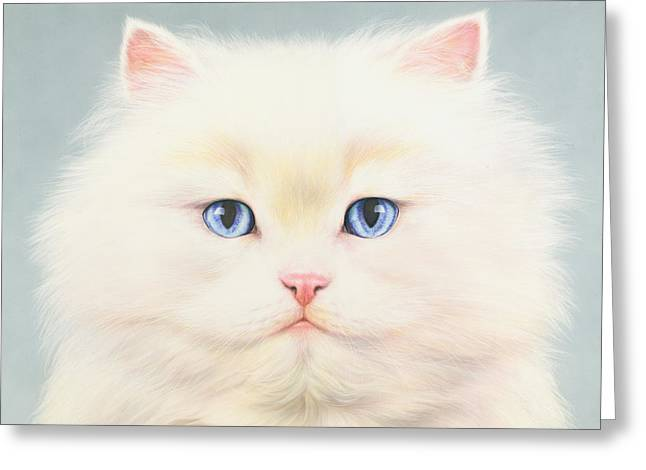 Persian Illustration Greeting Cards - White Persian Greeting Card by Andrew Farley