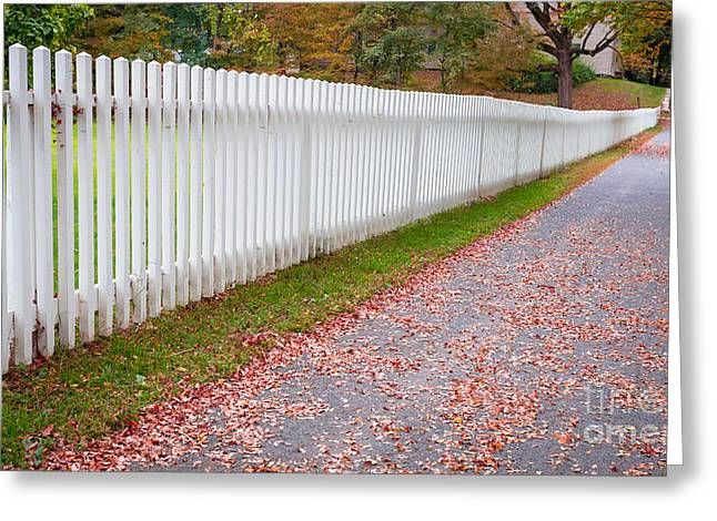 Deerfield Greeting Cards - White picket fence lined sidewalk Greeting Card by Edward Fielding