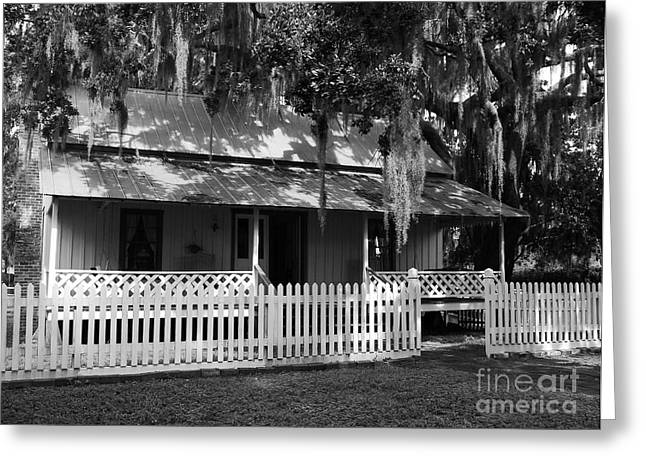 Florida House Greeting Cards - White Picket Fence Greeting Card by Mel Steinhauer