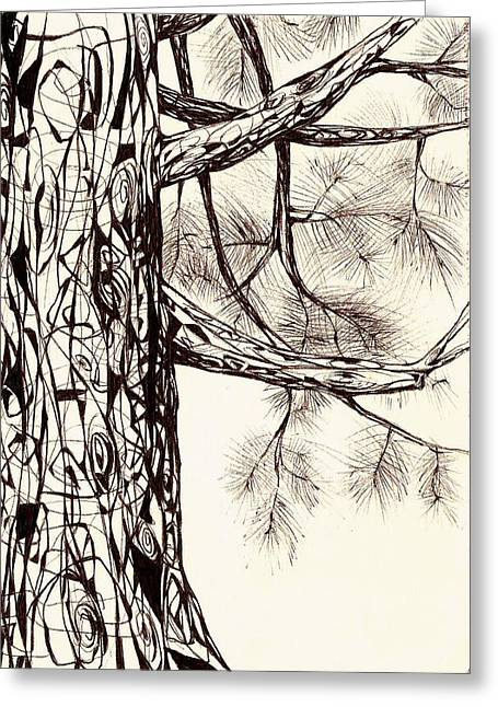 Andrea Carroll Greeting Cards - White Pine Greeting Card by Andrea Carroll