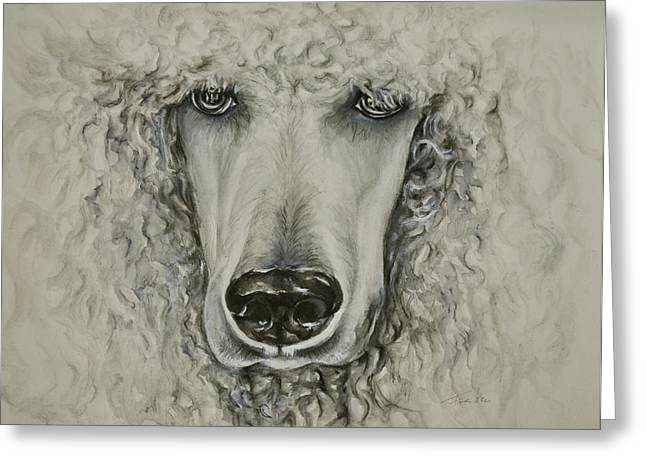 Snowwhite Greeting Cards - White Poodle Greeting Card by Christina Frenken
