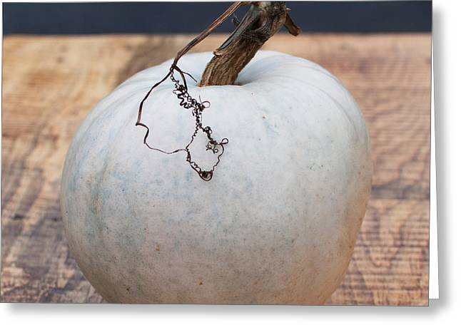 Pumpkin Greeting Cards - White Pumpkin Greeting Card by Indigo Schneider