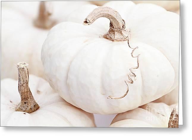 Tendrils Greeting Cards - White Pumpkin Macro Greeting Card by Stephanie Frey
