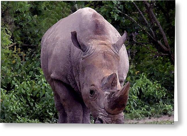 Rhinoceros Greeting Cards - White Rhinoceros Water Coloring Greeting Card by Joseph Baril
