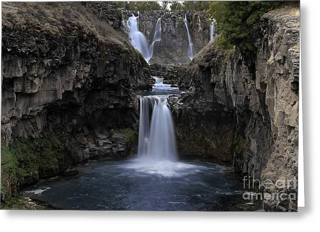 Tim Moore Greeting Cards - White River Falls Greeting Card by Tim Moore