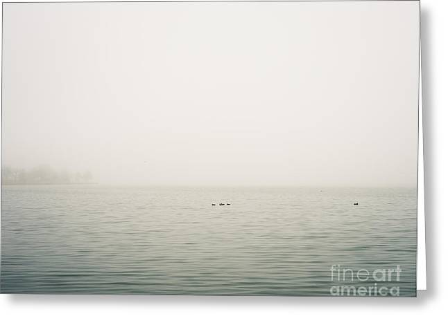 Minimal Landscape Greeting Cards - White Rock Lake Fog Greeting Card by Sonja Quintero