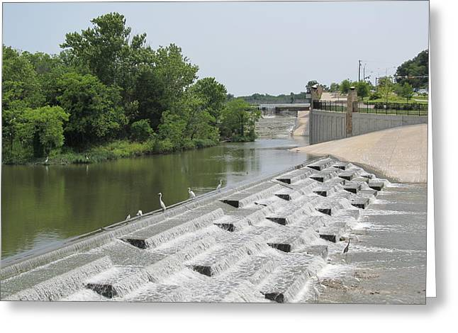 Tress Greeting Cards Greeting Cards - White Rock Lake Spillway Greeting Card by Donna Wilson
