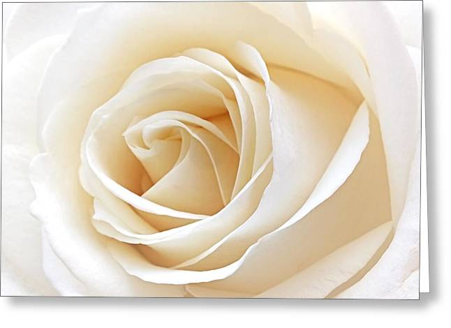Cream Roses Greeting Cards - White Rose Heart Greeting Card by Gill Billington