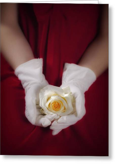 Off-white Greeting Cards - White Rose Greeting Card by Joana Kruse