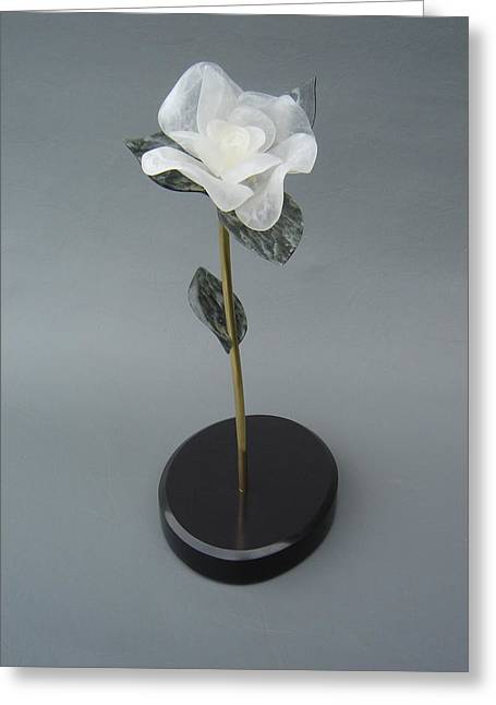 Leslie Dycke Greeting Cards - White Rose Greeting Card by Leslie Dycke