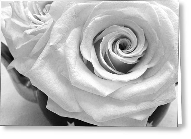 Patrick Greeting Cards - White Rose Greeting Card by Patrick