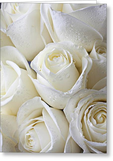Wet Greeting Cards - White roses Greeting Card by Garry Gay