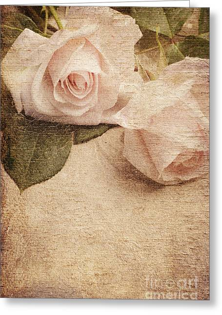 Pink Flower Prints Pyrography Greeting Cards - White Roses Greeting Card by Jelena Jovanovic